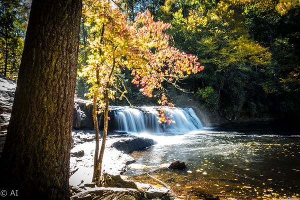 Wasserfälle im Herbst in den Smoky Mountains