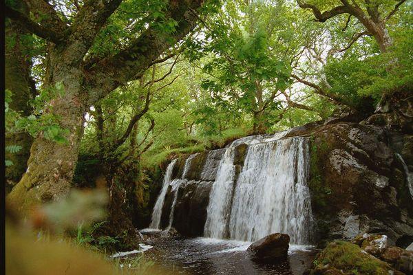 Wasserfall am Loch Awe (2000)