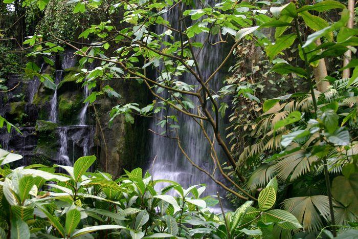 Wasserfall ( außen )