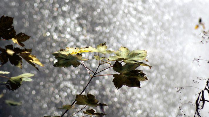 Wasserfall Hinterstein 2