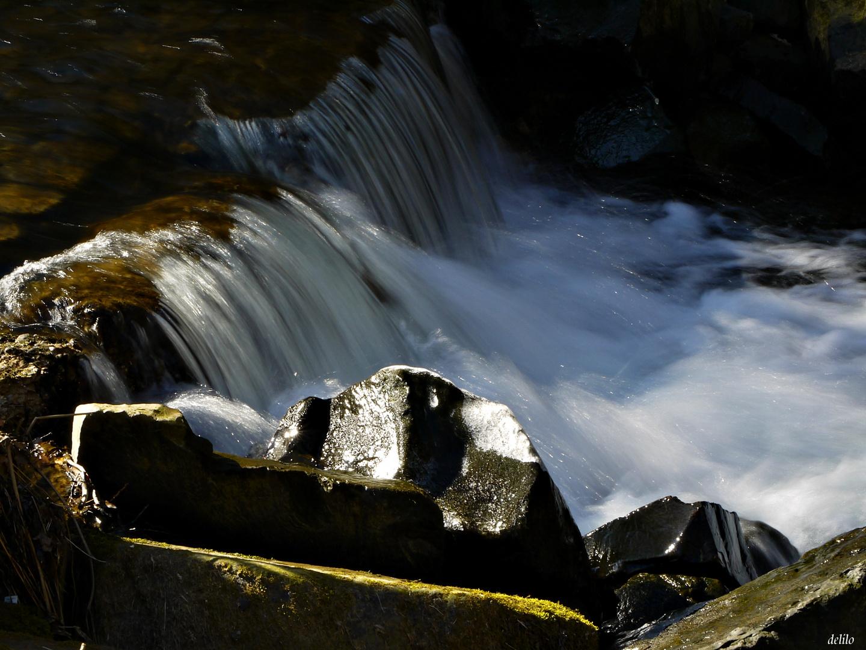 Wasserfall im Auenwald 2