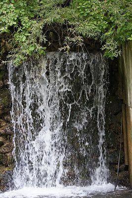 Wasserfall im Augsburger Zoo