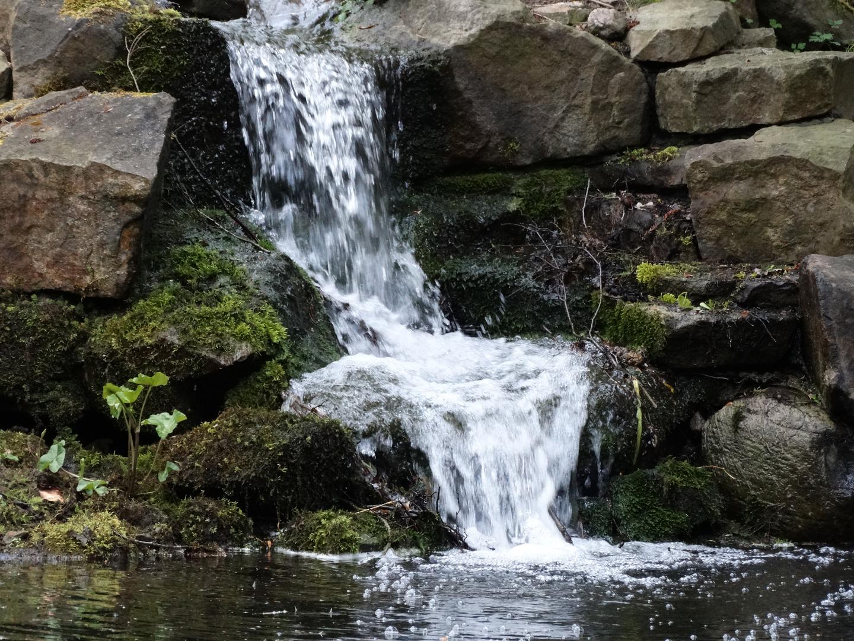 Wasserfall im Botanischem Garten