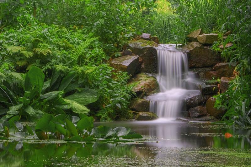 Wasserfall im Botanischen Garten Bochum
