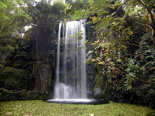 Wasserfall im Burgers Zoo