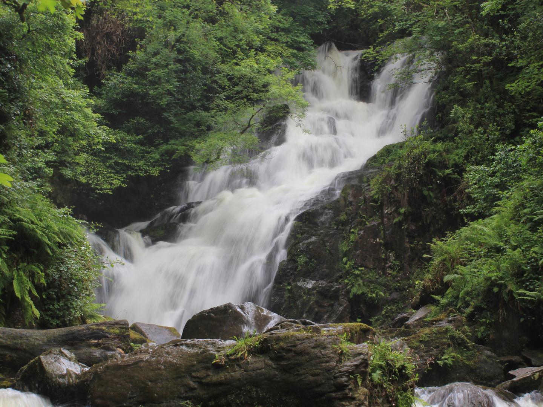 Wasserfall im dichten Wald