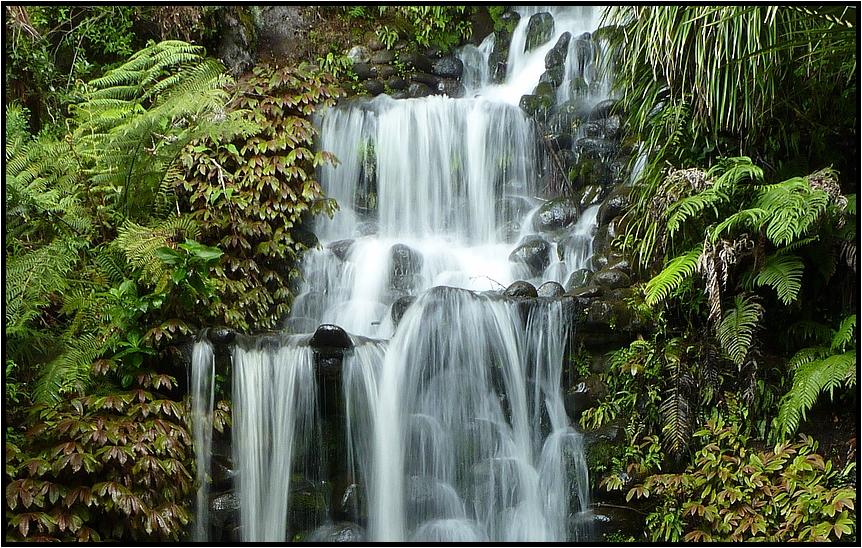 Wasserfall im Pukekura Park ( New Plymouth )