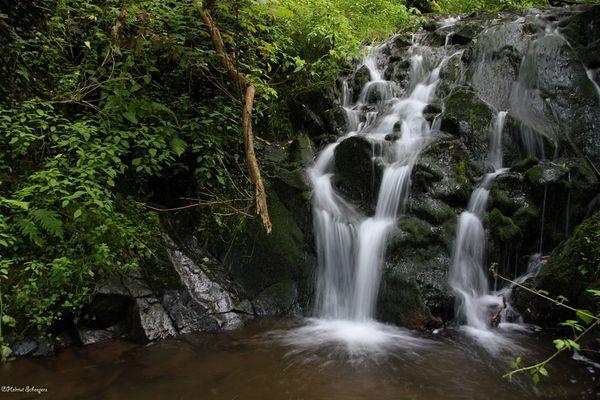 Wasserfall in Bad Bertrich
