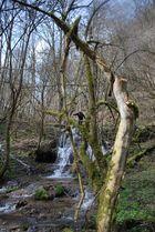 Wasserfall in der Fränkischen Schweiz