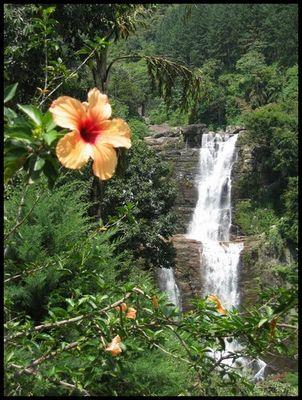 Wasserfall in Sri Lanka