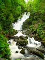 Wasserfall / Killarney Nationalpark