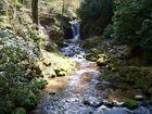 Wasserfall, warum in die Ferne......