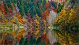 Wasserfarben von Jan Geerk