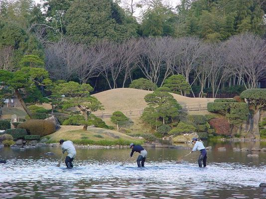 Wasserfeger im Suizenji-Park / Cleaning the Pond