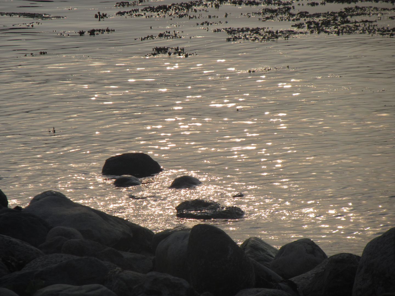 Wasserglanz