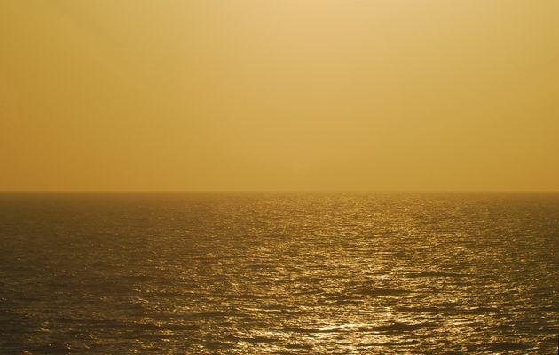Wassergold