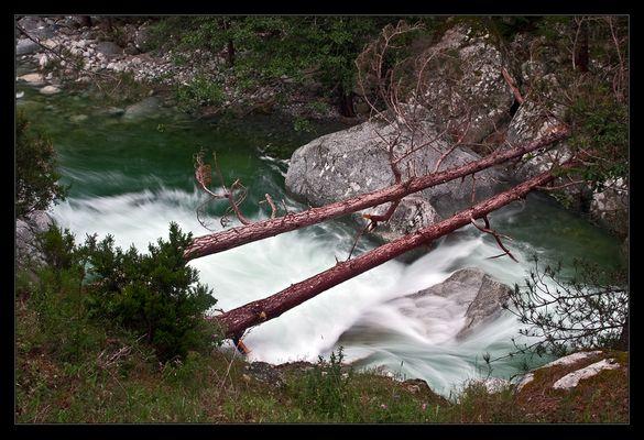 Wasseridylle im Restonicatal / Korsika
