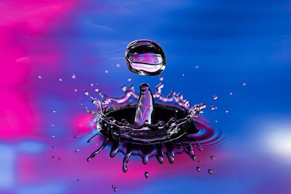 Wasserkrone