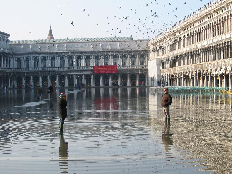 """Wasser""""läufer"""" in Venedig, v1.1"""