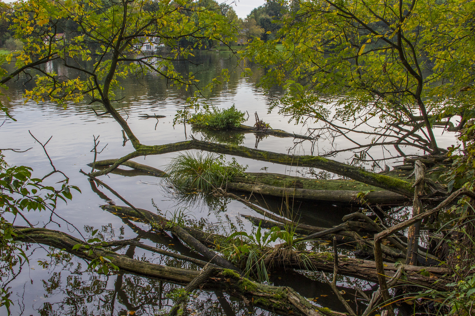 Wasserlandschaften
