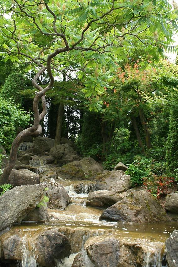 Wasserlauf, Japanischer Garten, Bonn