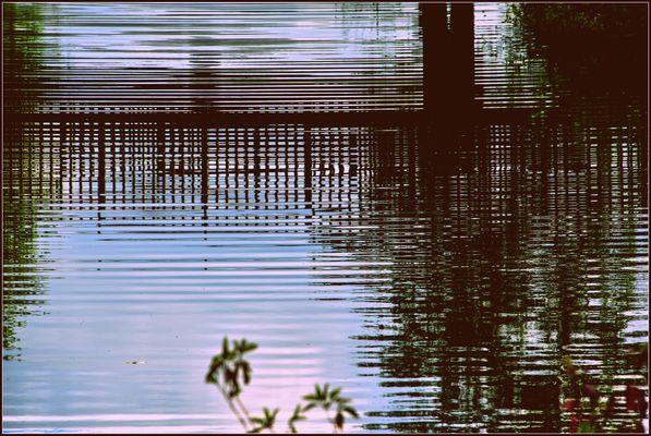 Wasserlinien