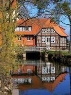 wassermühle im frühling