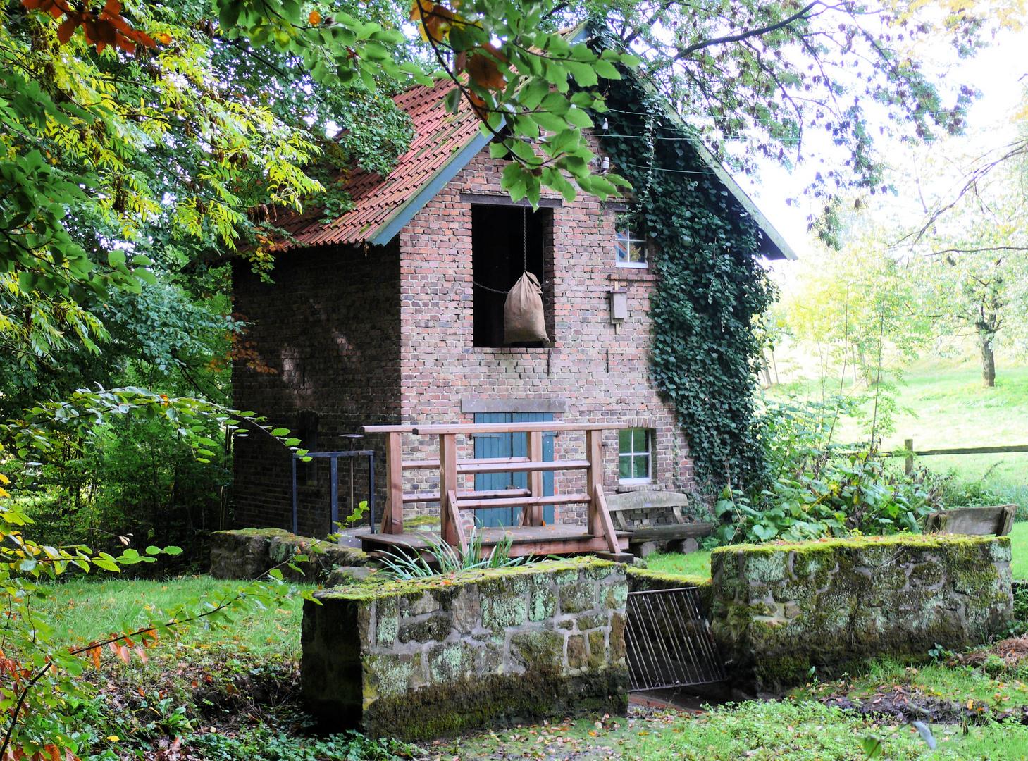 Wassermühle Im Knicksiek