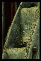 Wasserrad -- Detail