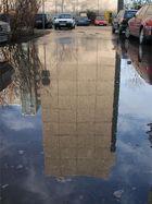 Wasserschaden in Dresden...und deren schöne Folgen
