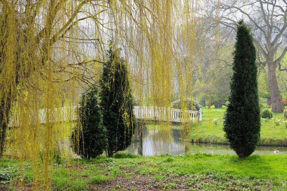 Wasserschloß Hünnefeld, Garten