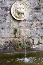 Wasserspeier im Park Sanssouci - Potsdam