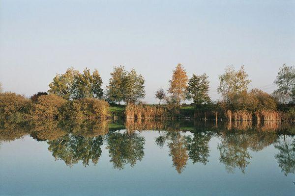 Wasserspiegelung Kiesgrube