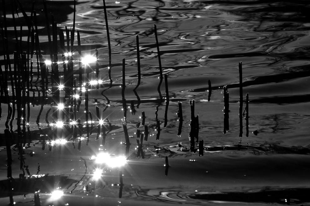 Wasserspiegelungen