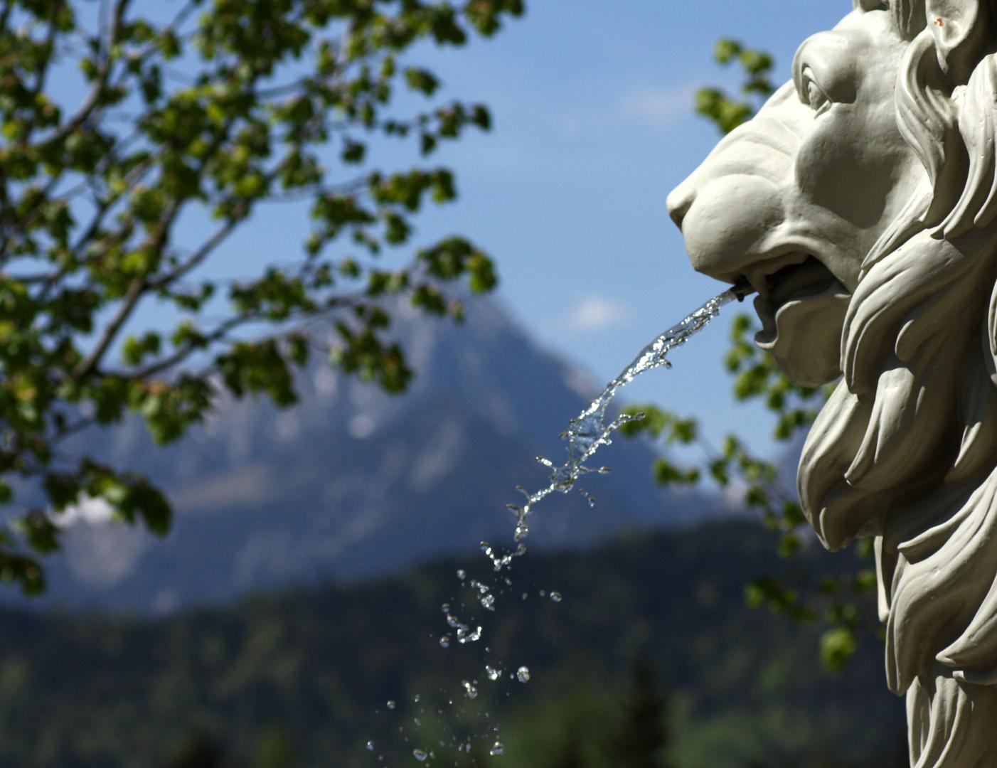 wasserspuckender Löwe