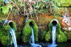 Wasserversorgung im Nordschwarzwald