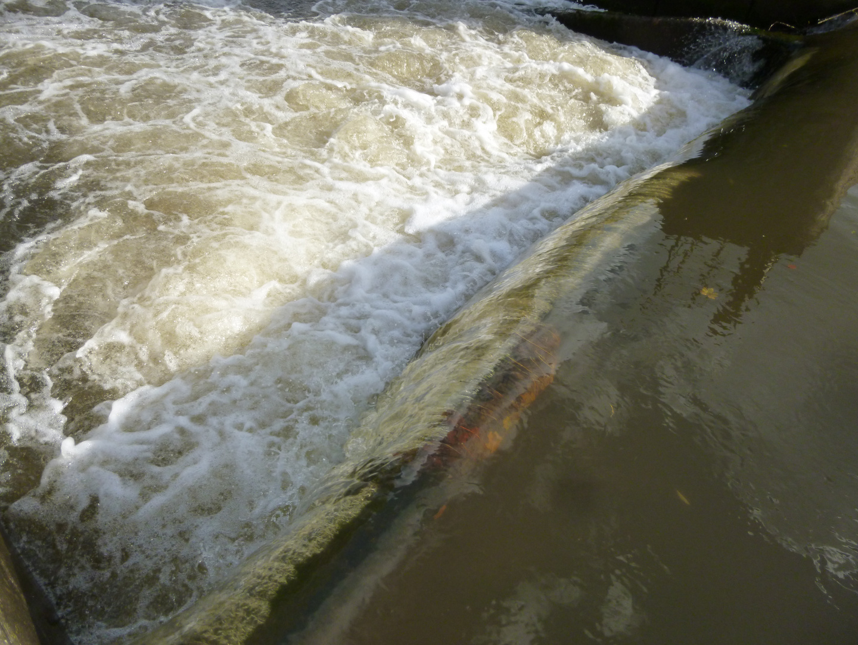 Wasserwalze am Wehr