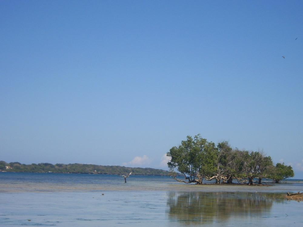 Wassini Island