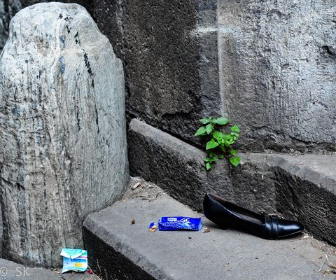 Waste or crime scene?