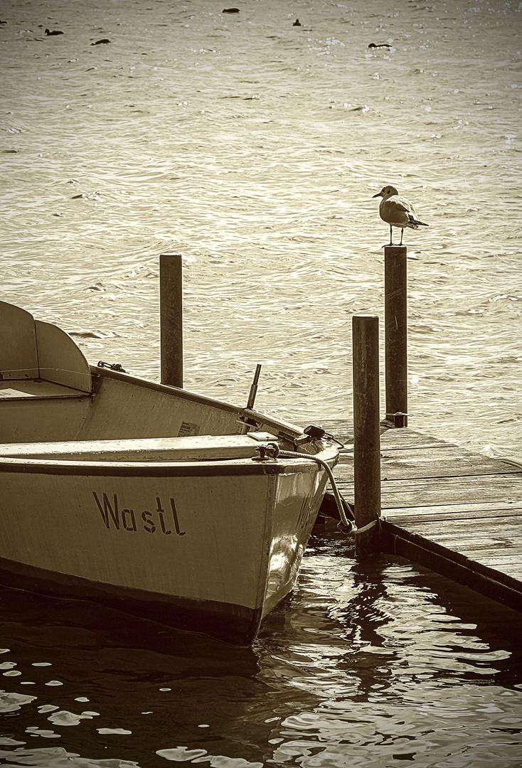 Wastl´s Wastl