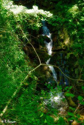 Water & Nature