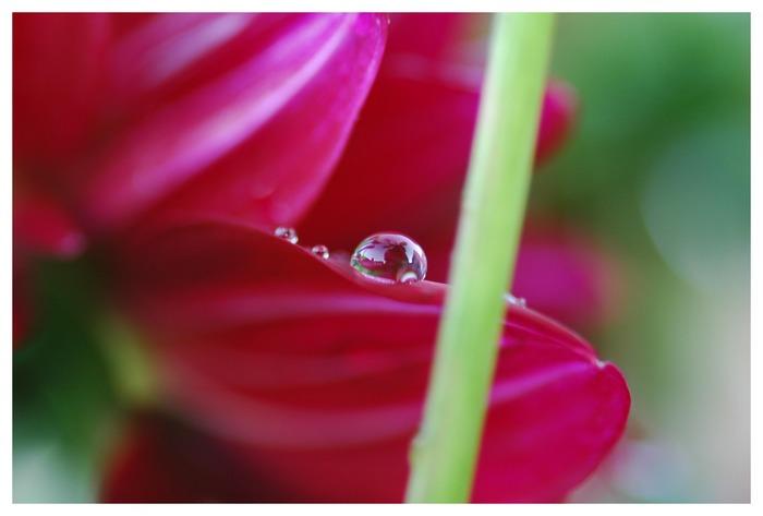 waterdrops 2.