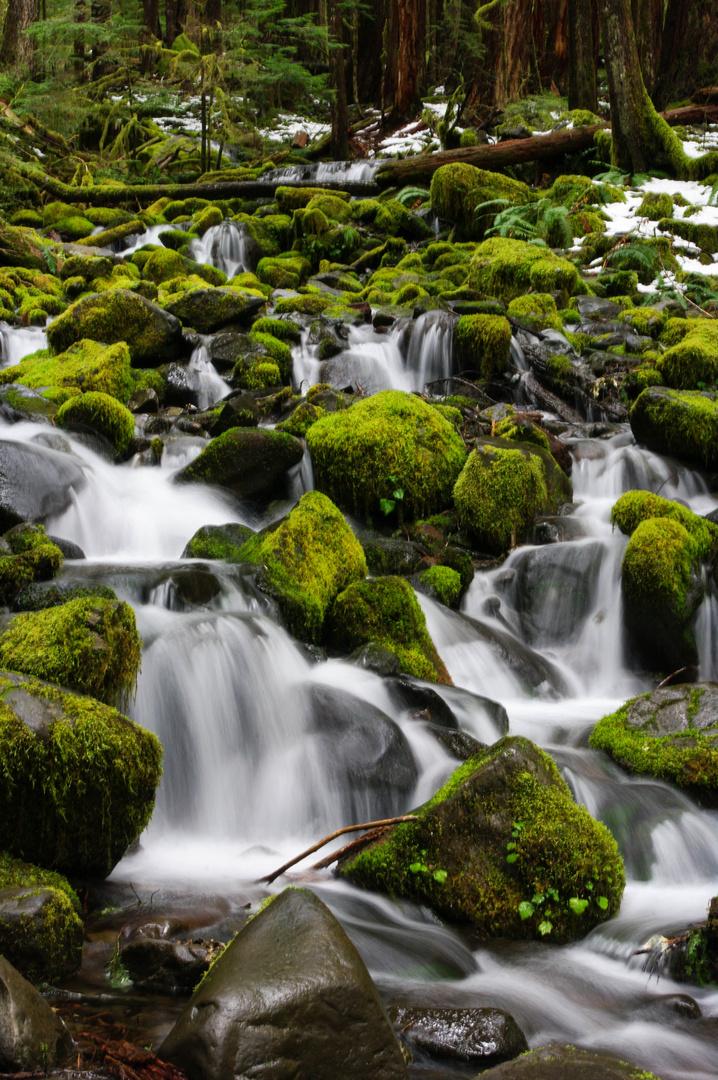 waterfall Olympic Nationalpark