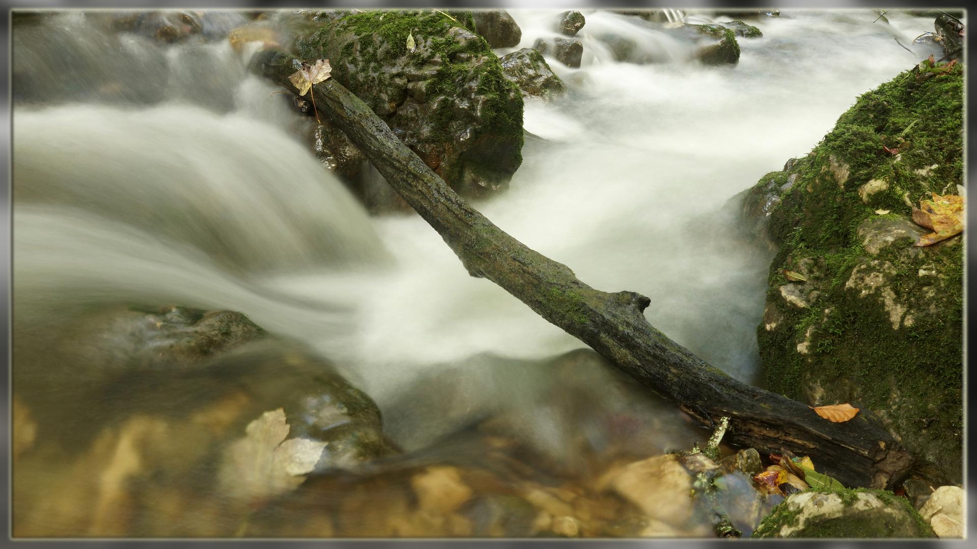 + Waterflow +