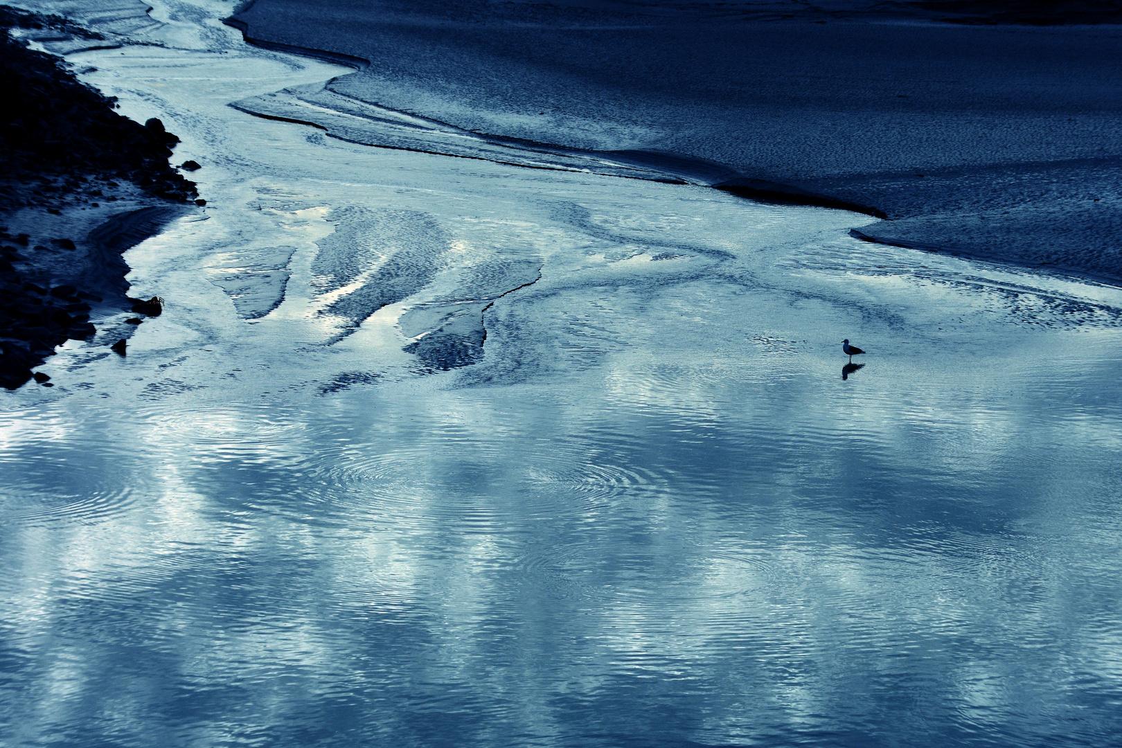 WaterWorld - 5