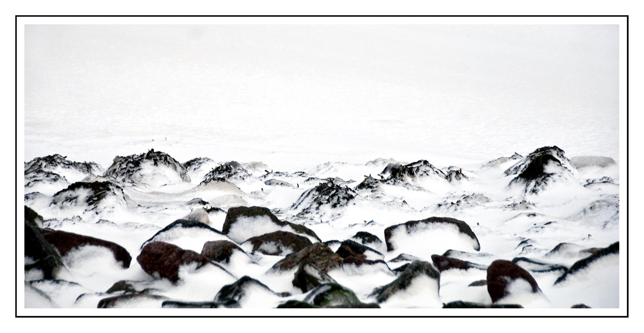 Watt mit Schnee und Eis