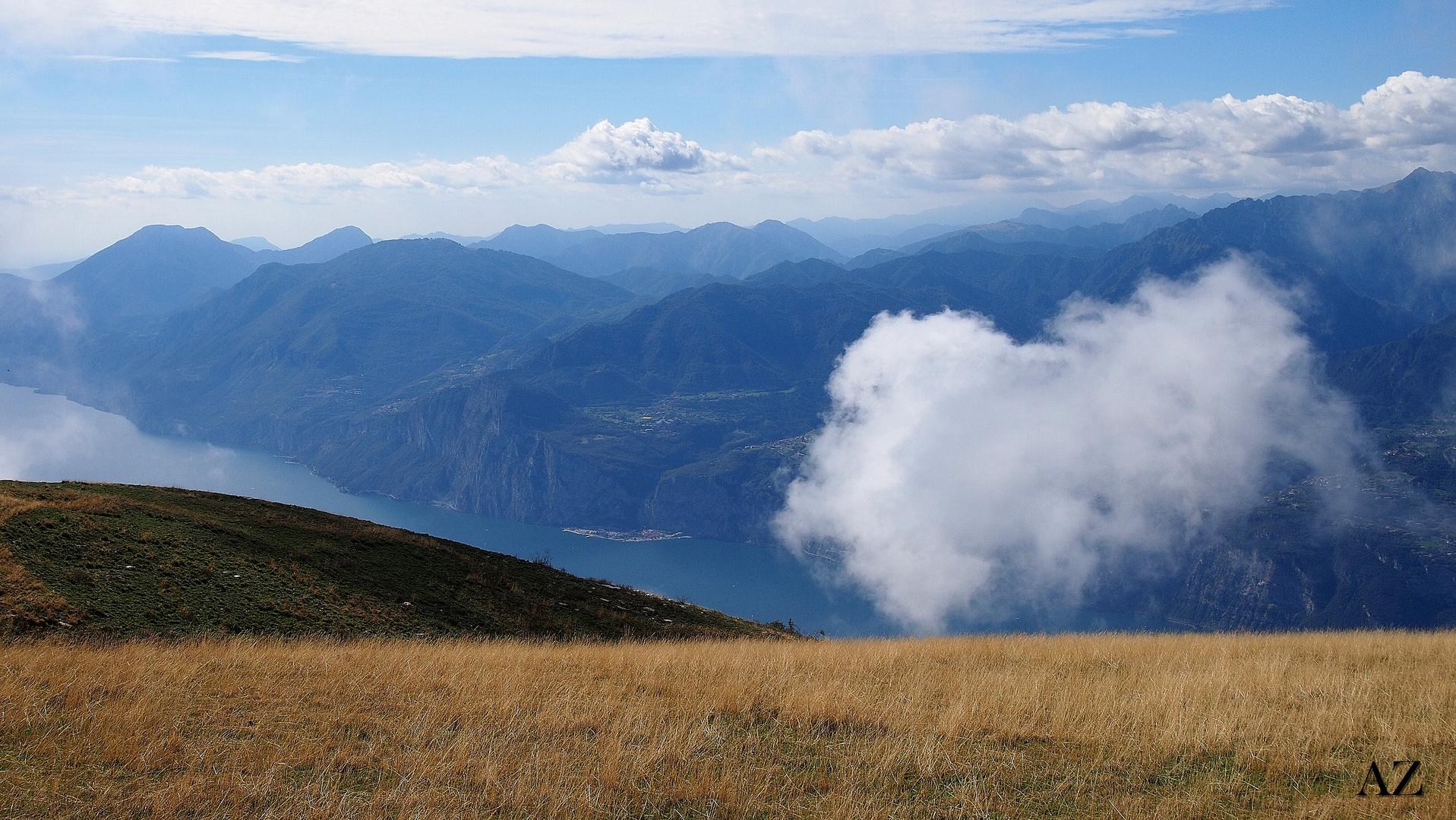 Wattebausch am Monte Baldo