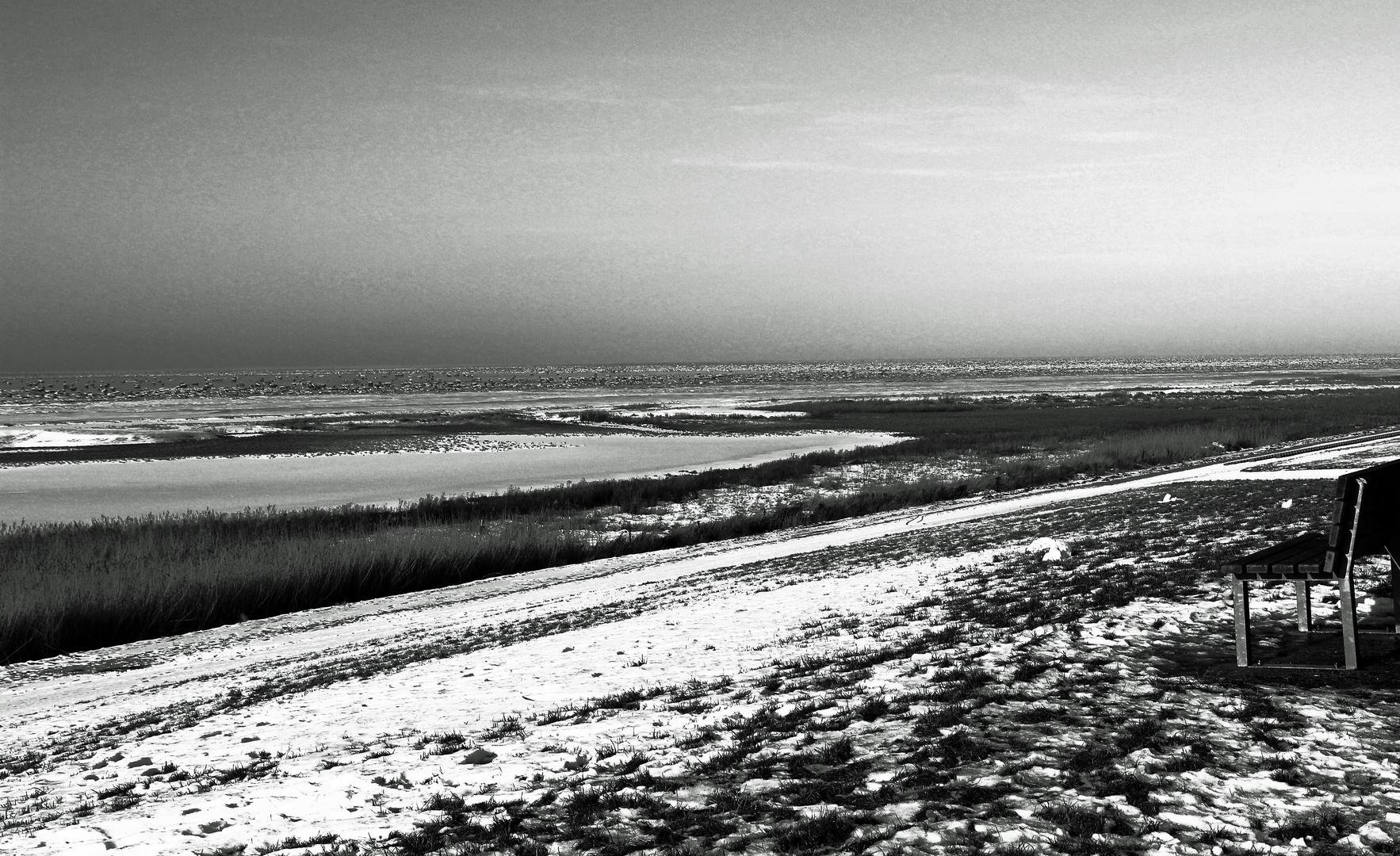 Wattenmeer im Winterschlaf