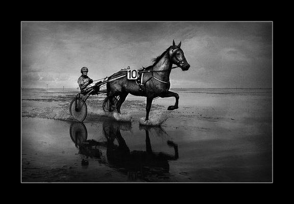""""""" Watt`n Pferd....."""""""