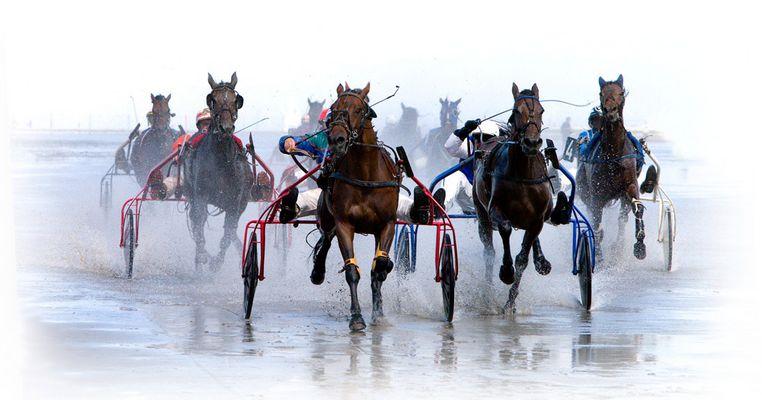 Wattrennen Cuxhaven